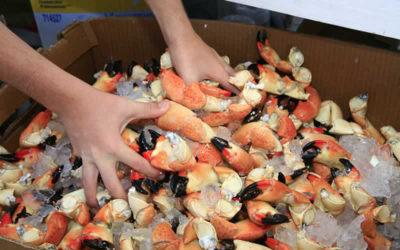 Feast Your Eyes on the Marathon Seafood Festival