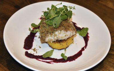 Pecan Crusted Black Grouper Recipe from Tavern N' Town Restaurant