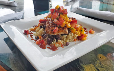 Chipotle Glazed Mahi-Mahi:  The Buzzard's Roost, Key Largo